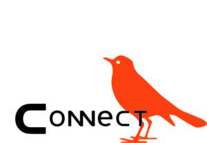 vogel oranje Connect logopedie beeldwerk woordmerk