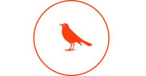 Vogel Connect logopedie